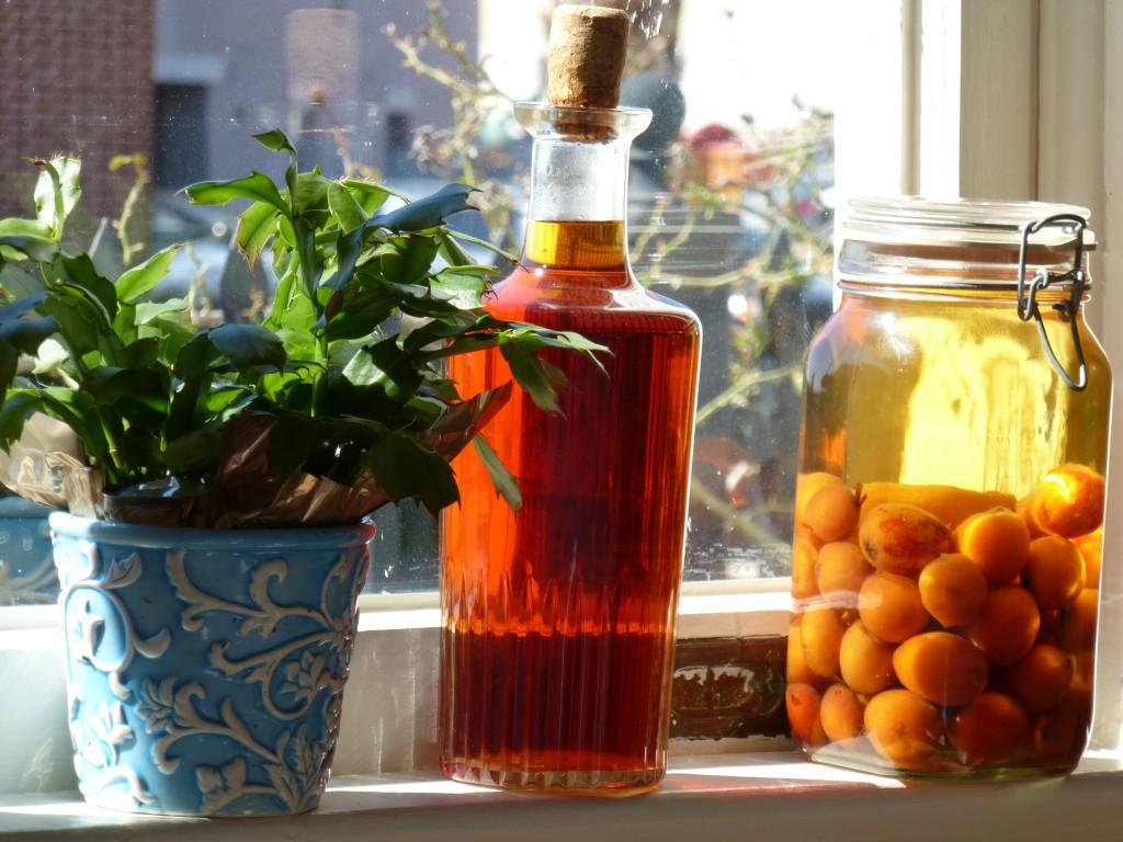 Loquat Liqueur in process