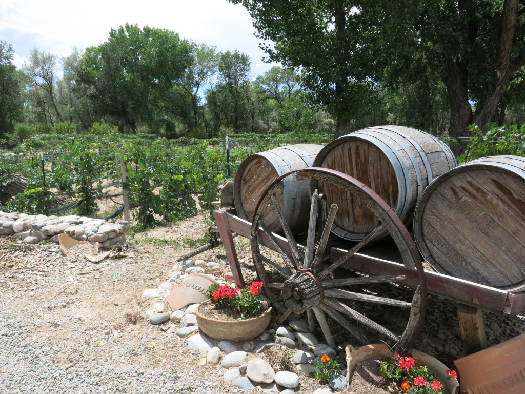 Vineyards at Estrella del Norte