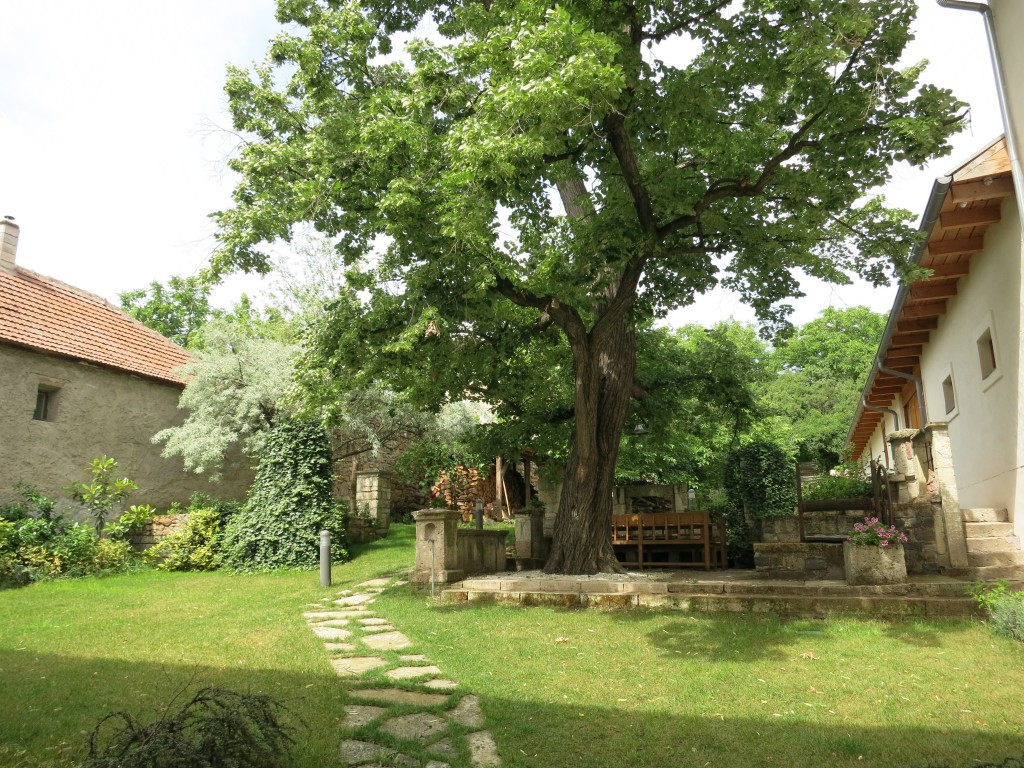The courtyard of Barta Pince
