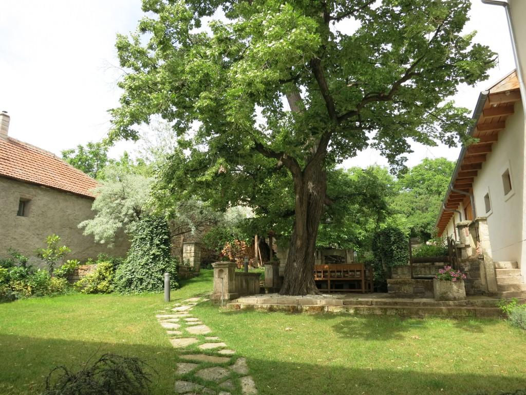 The courtyard of Barta Pince